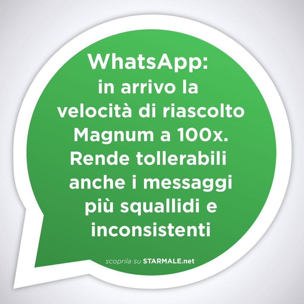 WhatsApp velocità Magnum